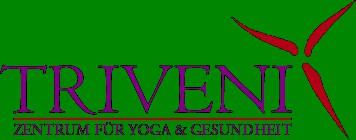 Logo von Triveni GmbH